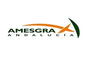 amesgra
